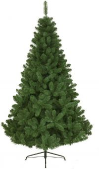 EVERLANDS Everlands Kerstboom 210cm Imperial Pine